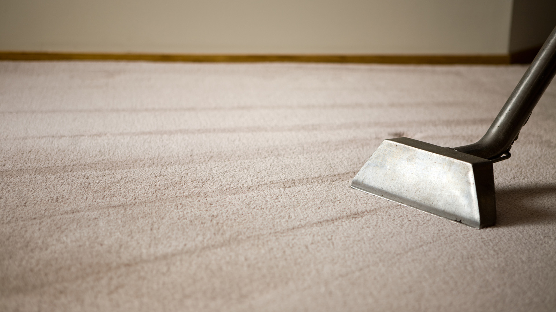 Cleaning Capital Carpets
